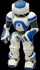 nao le robot francais